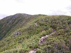 017 - Parc national de la Gaspsie : Mont Xalibu (Arfphandal Forfal Forphan) Tags: trip qubec gaspsie forest tree arbre fort nature water eau park landscape