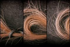 (E. Nelson) Tags: hair pink abstract red love lilfe stilllife sanantonio sanantoniotexas texas 2016 enelson ericnelson exn exnimages