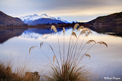 0S1A2969enthuse (Steve Daggar) Tags: newzealand sunset lake lakehayes winter mountains snowcappedmountains