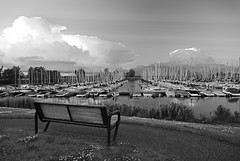 Bench With the View (Rosemary.999) Tags: summer outdoor marina water bench bw monochrome nikon d750 ottawa canada