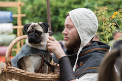 Dog and man (stenaake) Tags: pug dog medieval festival week visby gotland sweden man basket