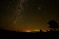 Starry Strzeleckis (phunnyfotos) Tags: sky silhouette night rural stars treesilhouette skies glow farm south australia victoria timeexposure vic nightsky starry seaview gippsland milkyway sigma1020mm strzeleckiranges southgippsland westgippsland strzeleckis phunnyfotos auroraspotting