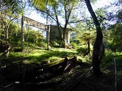 Cascade station (ajat18) Tags: abandoned station jones waterfall rainforest ruin cascade coffs dorrigo glenreagh dsrm
