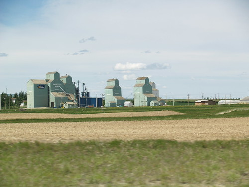 Wooden Grain Elevators at Warner, AB