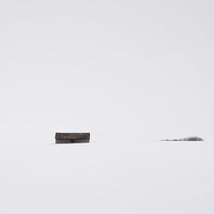 Prairie Winter IV (Sandra Herber) Tags: winter snow canada alberta highkey minimalism prairies minimalist