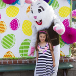"Alpine Easter Bunny • <a style=""font-size:0.8em;"" href=""http://www.flickr.com/photos/52876033@N08/17090170012/"" target=""_blank"">View on Flickr</a>"