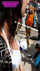 candid downblouse teen bike week 2015 (1) (Mr SLOWMOTIVES) Tags: bike candid teen voyeur week oops downblouse 2015 braless