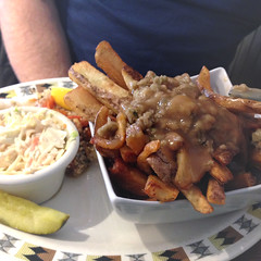 Newfie Fries - #112/365 (Kadacat (Marlene)) Tags: day112 day112365 365the2015edition 3652015 22apr15