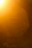 Solar (Mario Morales Rubí) Tags: lensflare sunsetlight goldenhour goldenlight magiclight magicallight goldensunlight goldengrass goldensunsetlight magicgrass magicgolden magicalgrass