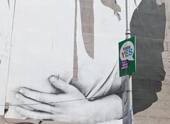 Marriage Referendum: George's St. Mural (Skyroad) Tags: