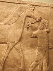 DSCN3029 (Nemoleon) Tags: june britishmuseum assyrian 2016 reliefsculpture