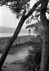 Fishing from the broken dam in the rain (Dalliance with Light) Tags: bw tree film monochrome rain us newjersey fishing scans unitedstates dam trix milltown olympus35sp