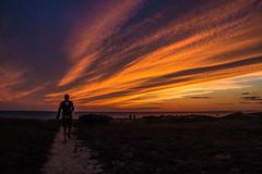 Sunset Spectacular (SueZinVT) Tags: duck harbor duckharbor wellfleet canon70d capecodbay clouds silhouettes sky water bay