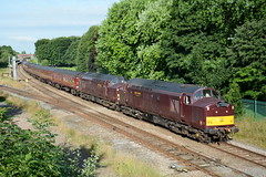 37669 and 37668 Lostock Hall Junction 21/07/2016 (Brad Joyce 37) Tags: soe 37669 37668 1z25 westcoastrail wcrc class37 tractor lostockhalljunction scarboroughspaexpress maroon locomotive doubleheader mk1 passengertrain sunshine trees