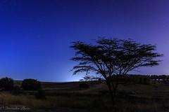 52Frames wk 32: Night (quietusleo) Tags: night nightphotography astrophotography israel negev desert long exposure