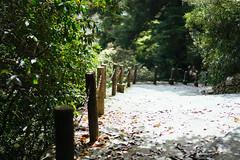 The path we took to Daisho-in was simply beautiful (tiagoalexandresilva) Tags: asia honshu japan sonya6000 hiroshima miyajima itsukushima
