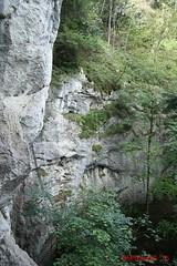 IMG_8962 (Pfluegl) Tags: niedersterreich sterreich austria lower wandern hikking hiking wanderlust natur nature autumn summer rock steine geology geologie steinwandklamm klamm gorge canyon