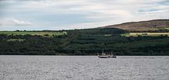 Loch Ness, Highlands, Scotland (Jose Antonio Abad) Tags: alba escocia highland josantonioabad lago lagoness lanscape lochness naturaleza paisaje pblica reinounido scotland unitedkingdom agua nature water abriachan