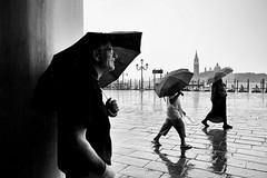 Fuji X70 - Rain in Venice (konstantin.tilberg) Tags: fujifilm fujix70 fuji fujifilmx70 fujix x70 street streetphoto streetphotography people venice venezia italia italy city rain umbrella bw bnw explore explored