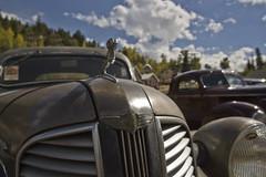 _MG_0203E (camaroeric1) Tags: classic car hotrod dodge