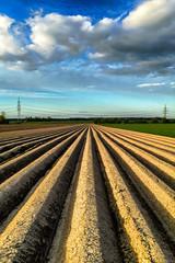 Straight Lines (AHO66) Tags: lines germany deutschland feld felder wolken iphone niedersachsen linien barsinghausen barrigsen iphone6plus