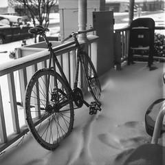 OSDH (BurlapZack) Tags: rolleiflextlr 75mmf35 tlr dentontx osdhcp oakstreetdrafthousecocktailparlor bar porch snow snowday winter winterwonderland bike bicycle fixie roadbike bw mono monochrome 6x6 squareformat downtown film analog 120film kodaktmax100 100iso filmisnotdead grainisgood availablelight railing park tracks trail northtexas mediumformat tallseat still quiet bokeh