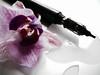 Modern Art (terrresita) Tags: feder apple laptop mac blüte pink orchidee füller flower stilleben modern flor spiegelung