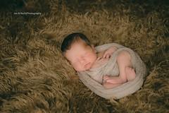 Sleeping Newborn (Jon and Rach   Photography) Tags: boy sleeping portrait baby zeiss studio photography jon child sony calm newborn cz za rach carlzeiss 2470mm a850 sonyalpha alpha850 sonycz2470mmf28 zeissglass 2470mmf28carlzeissvariosonnart jonandrachphotography