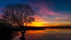 Kenfig Sunset (technodean2000) Tags: sunset color colour nature pool silhouette wales nikon south reserve bridgend porthcawl lightroom d610 kefig