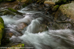 Long exposure of a small stream seen along the Roaring Forks Motor Nature Trail (Alaskan Dude) Tags: travel nature landscape nationalparks smokies greatsmokymountainsnationalpark