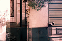 Pertederepres (Dwam) Tags: film doubleexposure multipleexposure 35mmfilm elusive ghostie dwam