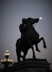 #nottediluna#moonnight#nochedeluna#torino#turin#luna#moon#notte#night#noche#piazzacastello#statuadipolluce#statueofpolluce#estatuadepolluce