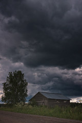 Small Barn Under The Storm Clouds (k009034) Tags: 500px weather copy space finland matkaniva oulainen agriculture architecture barn birch clouds countryside dramatic sky fields gravel nature no people road rural storm summer thunder tree teamcanon copyspace dramaticsky nopeople
