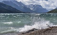 Surf's up! (Tracey Rennie) Tags: mountain lake water surf splash watertonnationalpark waterton upperwatertonlake