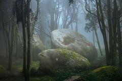 Mystic rocks (J C Mills Photography) Tags: portugal fog forest woodland landscape rocks wind sintra boulders serra pedras peninha