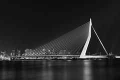 Erasmus Swan Exposed (frank_w_aus_l) Tags: longexposure bridge bw reflection netherlands monochrome architecture rotterdam nikon erasmus noiretblanc nl niederlande zuidholland d810 nikond810
