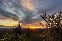 "Sunset Over Sebastopol • <a style=""font-size:0.8em;"" href=""http://www.flickr.com/photos/7605906@N04/28105699812/"" target=""_blank"">View on Flickr</a>"