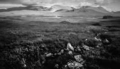 The Crossing (David Haughton) Tags: scotland scottish west highlands westhighlandway rannoch stream river wild wilderness plain grassland hills mountain mountains blackandwhite bw mono monochrome fineart landscape