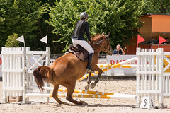 DSC07259_s (AndiP66) Tags: springen balsthal samstag saturday 3juli2016 2016 juli july pferd horse schweiz switzerland kantonsolothurn cantonofsolothurn contest wettbewerb horsejumping springreiten pferdespringen equestrian sports pferdesport sport martinameyer grueb wolhusen luzern sony sonyalpha 77markii 77ii 77m2 a77ii alpha ilca77m2 slta77ii sony70400mm f456 sony70400mmf456gssmii sal70400g2 andreaspeters solothurn ch concours