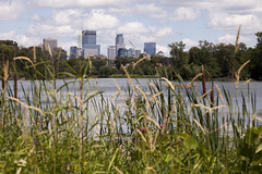 Minneapolis from Lake of the Isles (Lucie Maru) Tags: city summer urban lake water minnesota skyline clouds town downtown minneapolis sunny hike twincities cityskyline cityview lakeoftheisles minneapolisskyline summerwalk minnesotalakes minneapolislakes patharoundlake
