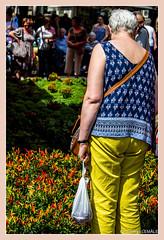 Femme dubitative devant les piments oiseau / Woman doubtful in front of hot peppers bird - Foire de l'ail et du basilic / Fair with garlic and basil (christian_lemale) Tags: foire fair ail garlic basilic tours touraine france nikon d7100 basil piment oiseau hot pepper bird femme woman