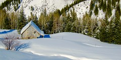 Old Colorado Barn in Winter (fossiled) Tags: snow colorado barn sensuous winter curves white
