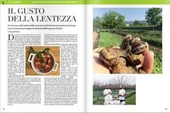 Vario-lumaca-italia-allevamento-elicicoltura-abruzzo (lumacaitalia) Tags: lumache abruzzo vendita allevamento lumaca italia snail caracoles escargot
