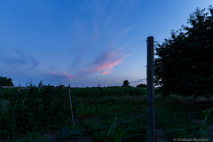 AA-20160727-1184 (andreas.abzieher) Tags: canon canon6d canonef24mmf14liiusm dossenheim sunset landscape primelens badenwrttemberg deutschland de