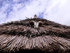 Evil Beware (Englepip) Tags: roof thatch skull warning butserancientfarm ironage