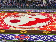 Motif central de l'édition 2016 (CORMA) Tags: 2016 belgique belgium tapisdefleurs bruxelles brussels grandplace bégonia japon japan europe flowercarpet