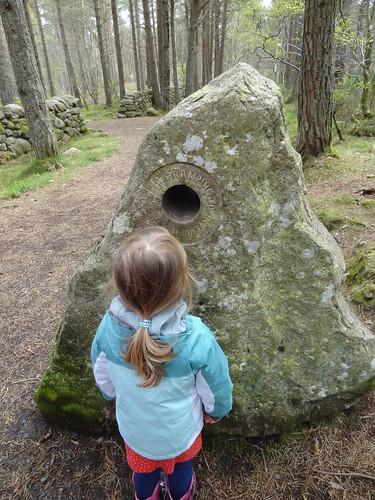 Bennachie Discovery Walk (10)