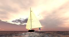 Topless Sailors cruise 110515 (ZZ Bottom) Tags: life sailing sailors topless second