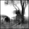 """Pin parasol"" (Corinne DEFER - DoubleCo) Tags: bw black tree blancoynegro nature arbol landscapes noiretblanc nb paysage arbre paesaggi var paysages paisagens landschaften corinnedefer updatecollection"