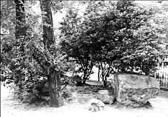 Una piedra en el camino (jubercar_78) Tags: blancoynegro paisaje highkey abstracto surrealista clavealta efectoorton